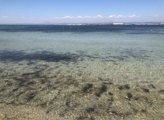 Giornata del mare e della cultura marinara, da oggi è attiva l'app #PlasticFreeGC
