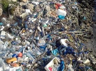 Il Mar Piccolo di Taranto soffocato dalla plastica
