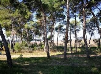 Taranto, nuovo look per la Palude La Vela