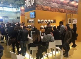 Il vino in Puglia, business da 100 milioni di euro