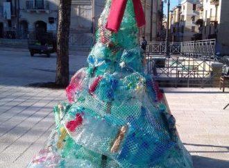 Un albero… ecologico, ecco il Natale dell'Isde