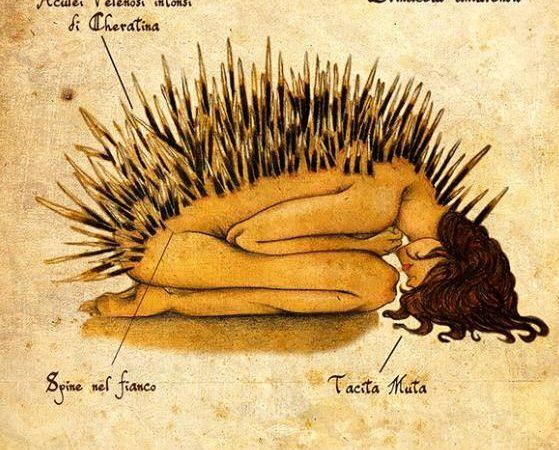 Anatomia Emozionale a Cibo per la Mente