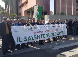 Xylella: Brindisi, Lecce e Taranto insieme in piazza