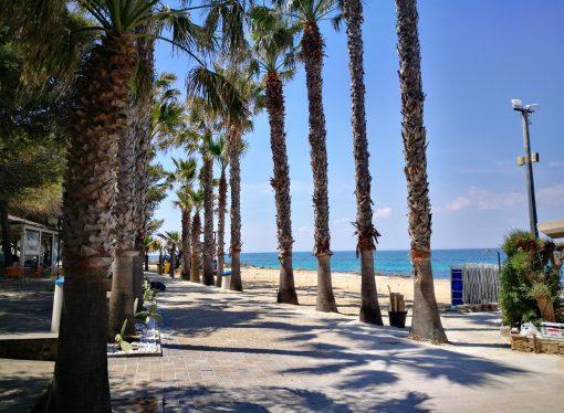 """Taranto, Pasquetta Festival allo Yachting Club <span class=""""dashicons dashicons-calendar""""></span>"""