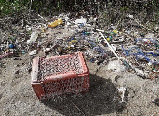 Taranto, a Mar Piccolo la plastica raddoppia