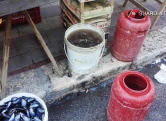 Banchetti improvvisati agli angoli delle strade, nuovo sequestro di cozze