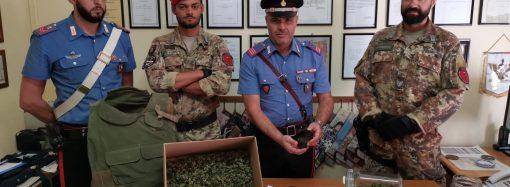 """""""Alto Impatto"""", arresti e controlli in provincia di Taranto. Il VIDEO del blitz"""
