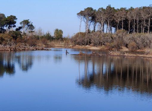 """Pineta e lago Salinella, le meraviglie di Marina di Ginosa saranno """"aree protette"""""""
