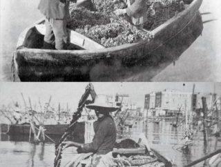 Taranto e il mare, progetto del museo MArTa. Domani la conferenza introduttiva